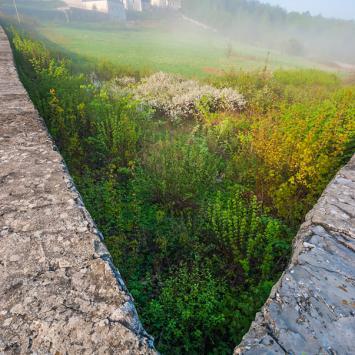 Rezerwat Karczówka w Kielcach - zdjęcie