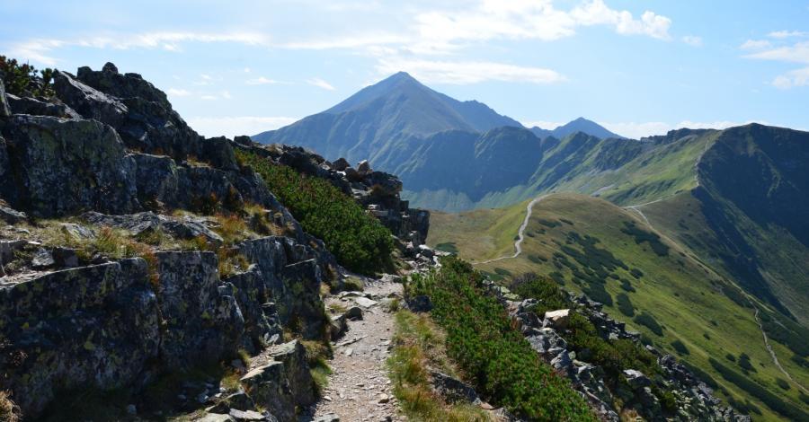 Ornak w Tatrach - zdjęcie