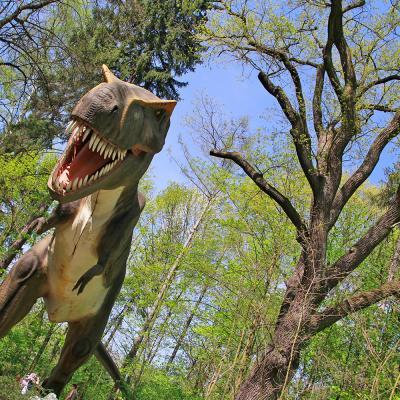 Park Ruchomych Dinozaurów w Zatorze