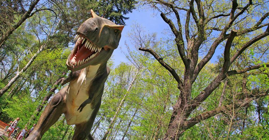Park Ruchomych Dinozaurów w Zatorlandzie - zdjęcie