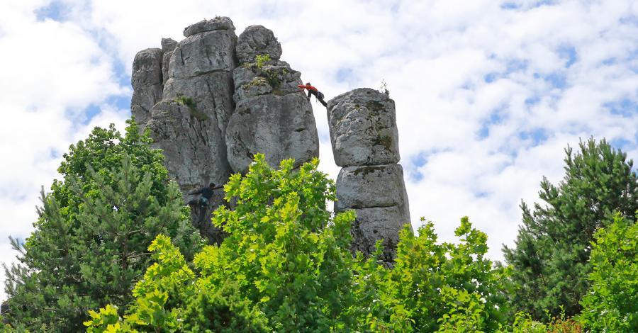 Wysoka w Skałach Rzędkowickich - zdjęcie