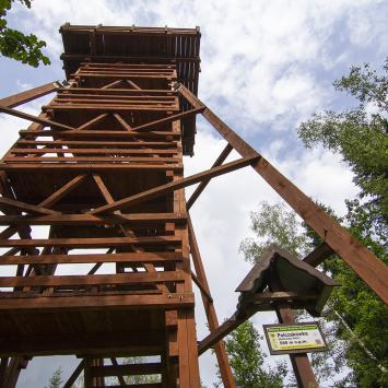 Wieża widokowa Polczakówka w Rabce Zdroju