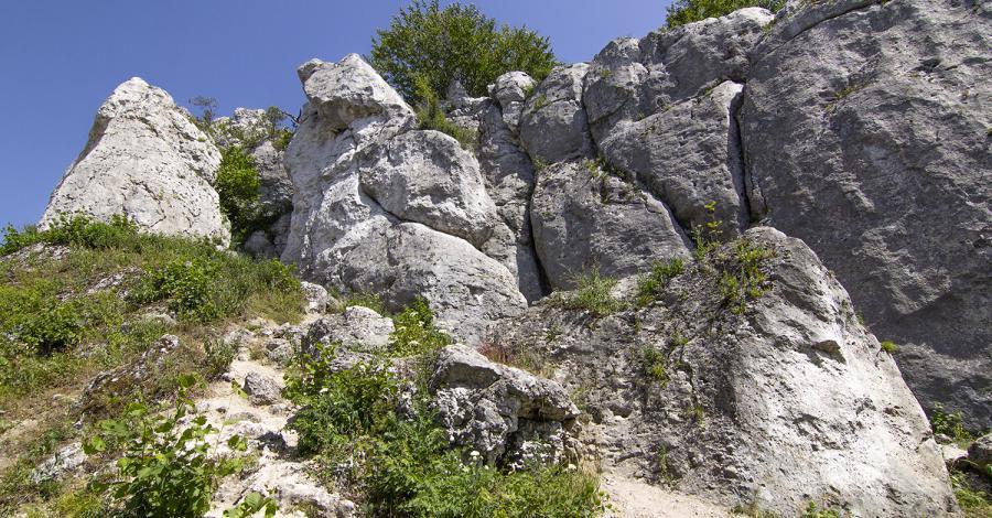 Góra Zborów, Anna Piernikarczyk