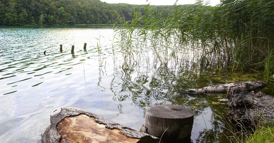 Łagowski Park Krajobrazowy - zdjęcie