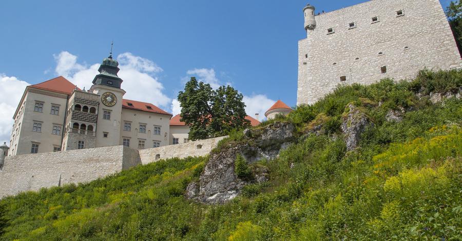 Zamek Pieskowa Skała, Anna Piernikarczyk