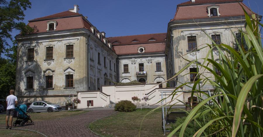 Pałac w Sośnicowicach - zdjęcie