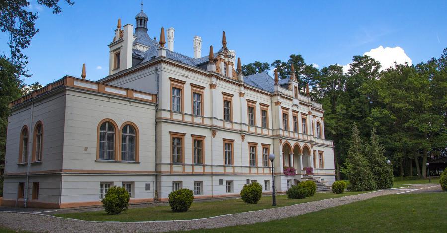Pałac w Przytoku - zdjęcie