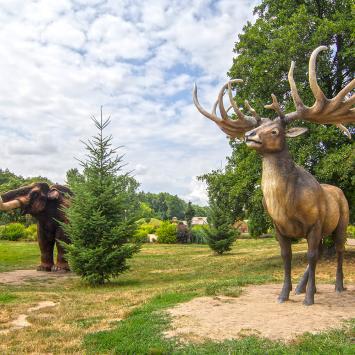 Park Wrocławski w Lubinie