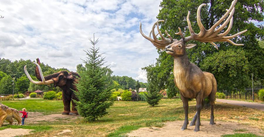 Park Wrocławski w Lubinie - zdjęcie