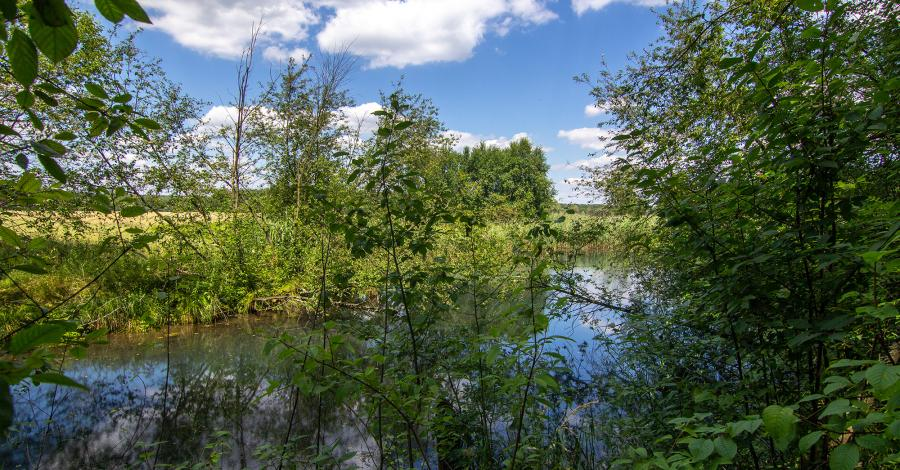 Granatowe Źródła w Załęczańskim Parku Krajobrazowym - zdjęcie