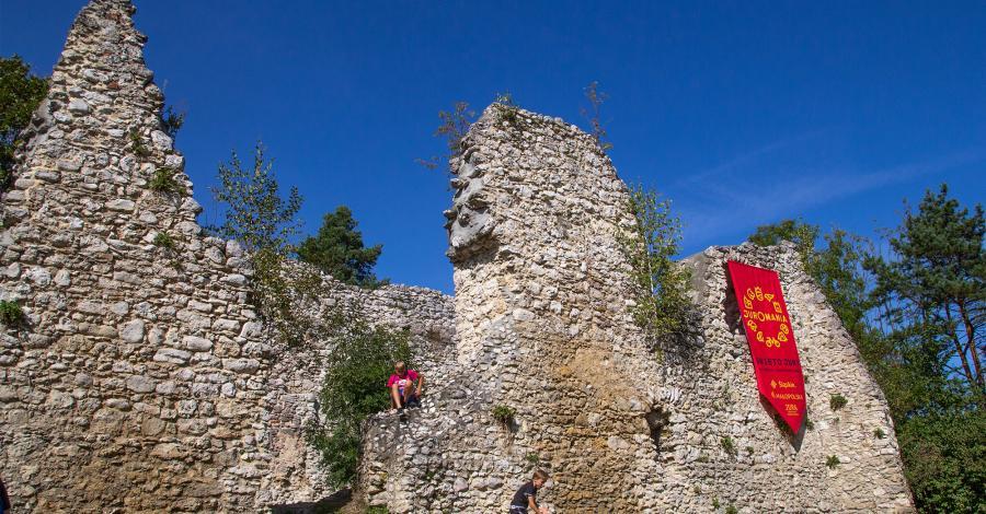 Zamek w Bydlinie - zdjęcie