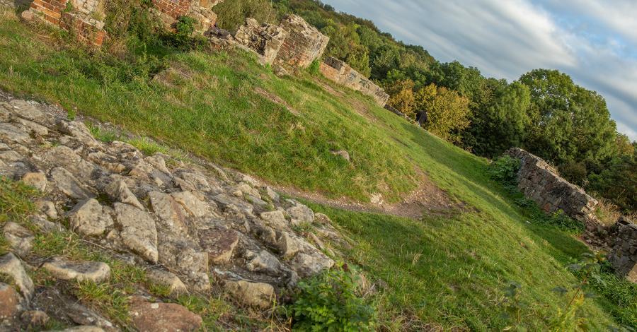 Ruiny zamku w Tarnowie - zdjęcie