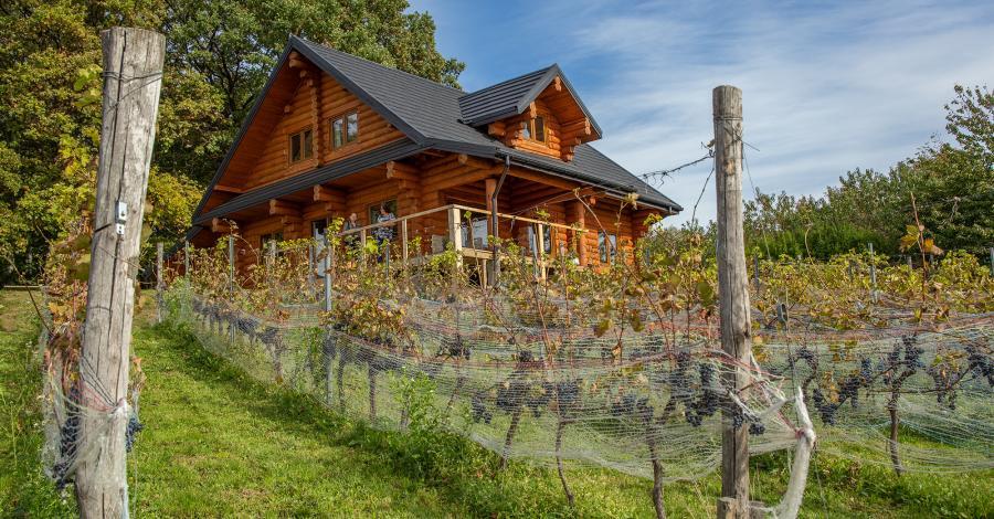 Winnica Uroczysko w Janowicach - zdjęcie