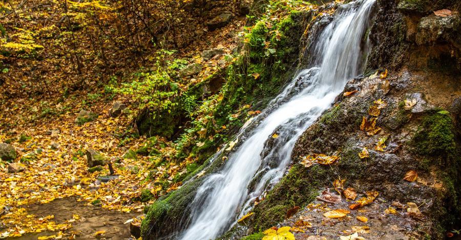 Dolina Eliaszówki - zdjęcie