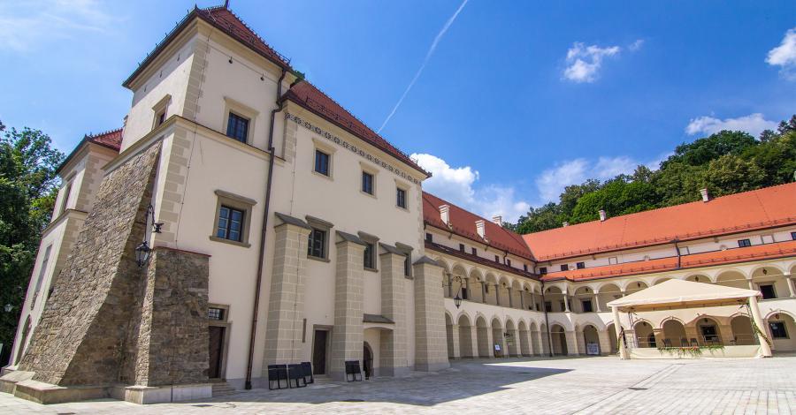 Zamek w Suchej Beskidzkiej - zdjęcie