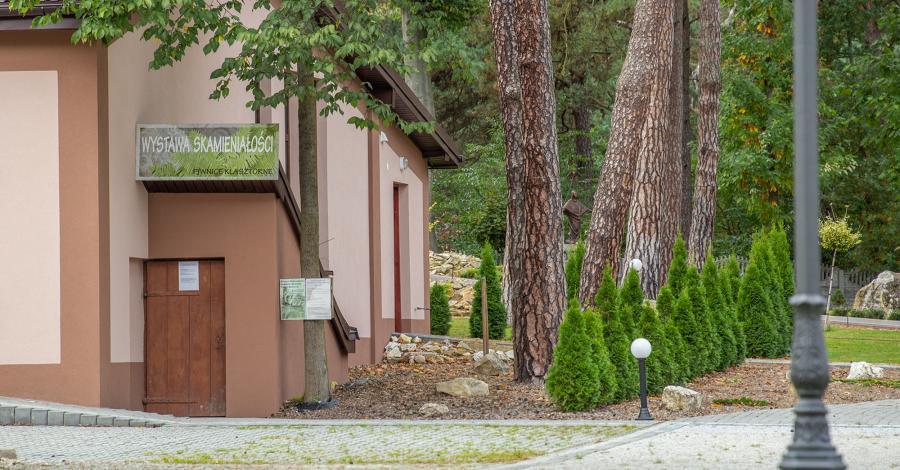 Wystawa Skamieniałości Piwnice Klasztorne w Żarkach - zdjęcie