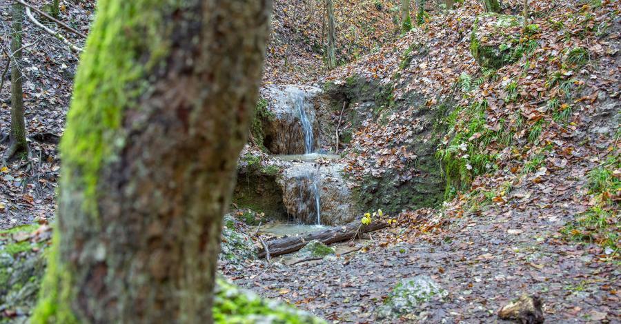 Wodospad w Dolinie Bolechowickiej - zdjęcie