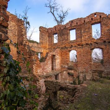 Pałac w Łubowicach