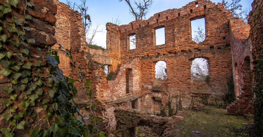 Pałac w Łubowicach - zdjęcie