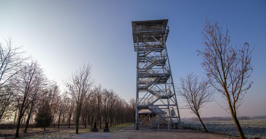 Wieża widokowa w Pietrowicach Wielkich - zdjęcie