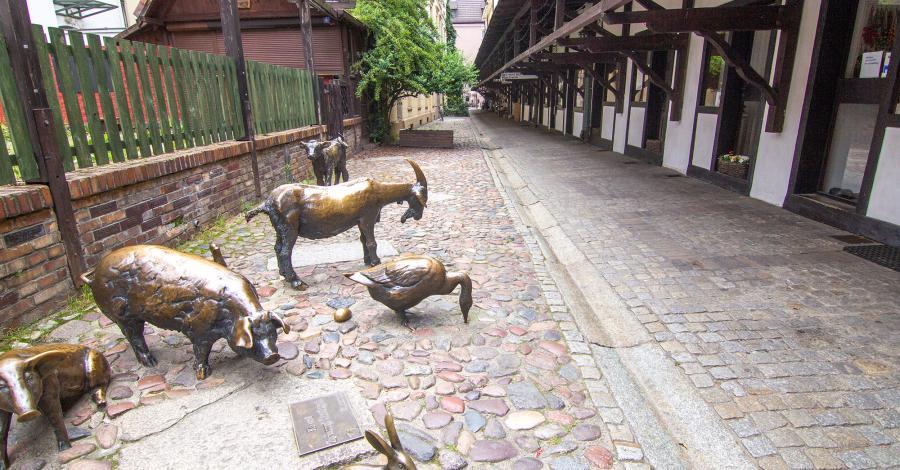 Pomnik Pamięci Zwierząt Rzeźnych we Wrocławiu - zdjęcie