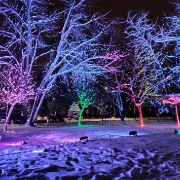 Park Światła w Mysłowicach