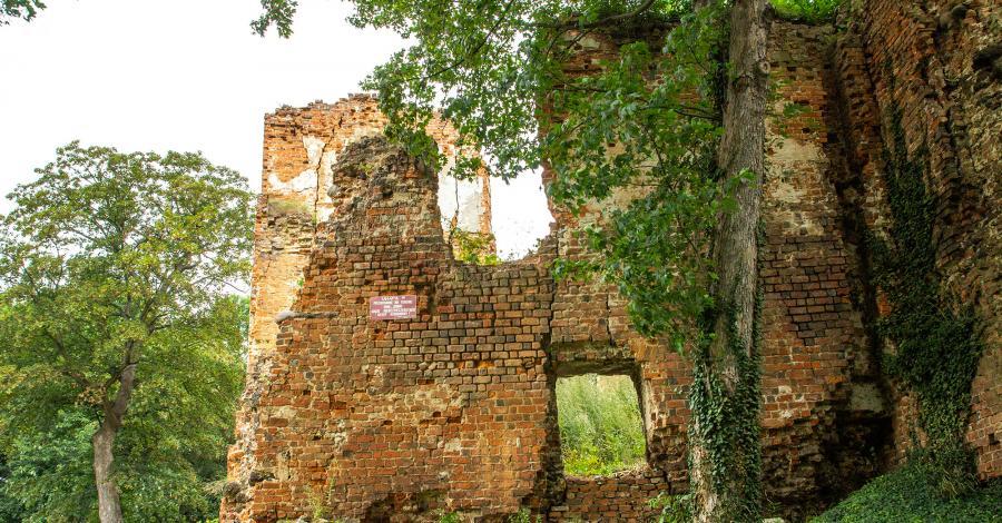 Zamek w Miliczu - zdjęcie