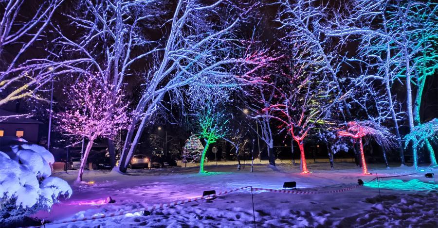 Park Światła w Mysłowicach - zdjęcie