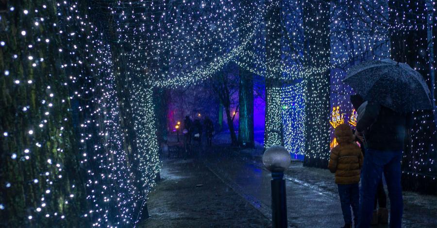 Park Iluminacji Zamek Topacz - zdjęcie