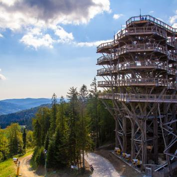 Wieża widokowa w Krynicy Zdroju