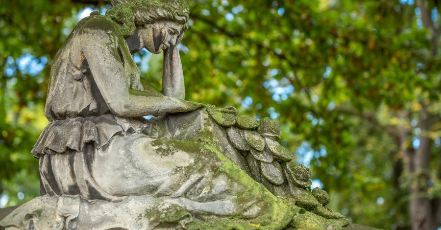 Stary Cmentarz w Tarnowie - zdjęcie
