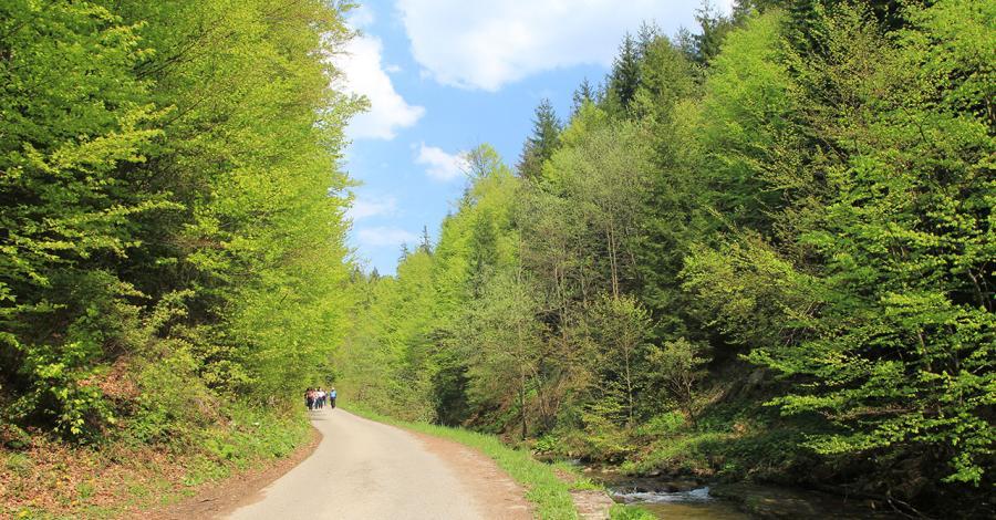 Dolina Białej Wisełki - zdjęcie