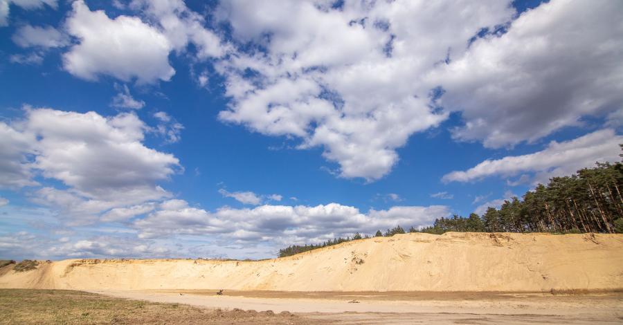 Wydmy w Stobrawskim Parku Krajobrazowym - zdjęcie