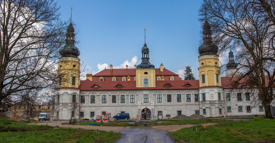 Pałac w Żyrowej - zdjęcie