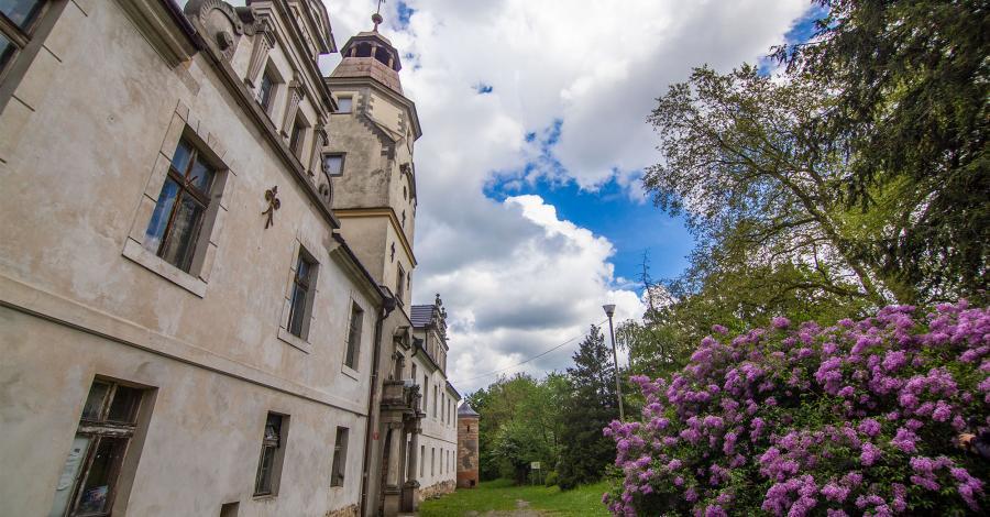 Zamek w Dąbrowie - zdjęcie
