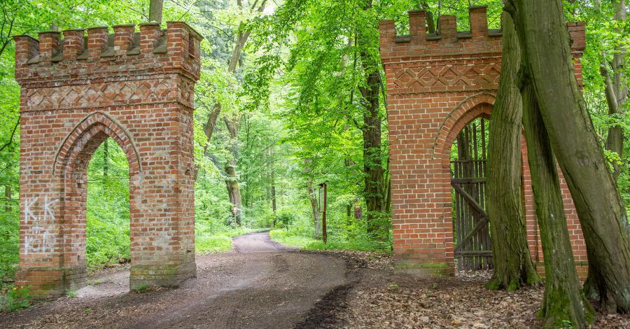 Brama Niemodlińska w Lipnie - zdjęcie