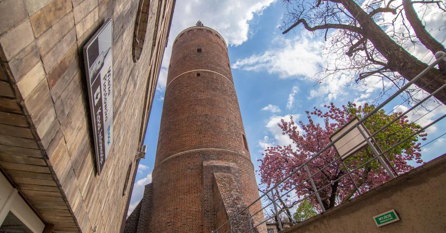 Wieża Piastowska w Opolu - zdjęcie