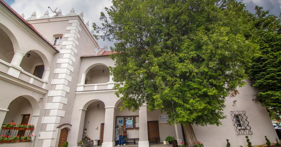 Zamek w Rogowie Opolskim - zdjęcie