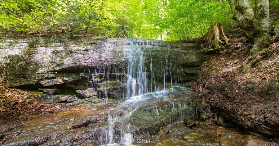 Wodospad Dusica w Beskidzie Małym - zdjęcie