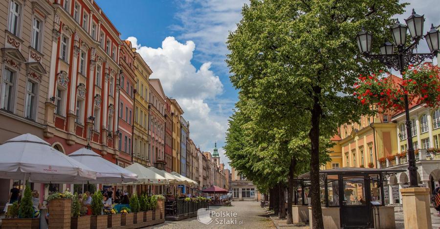 Rynek w Świdnicy - zdjęcie