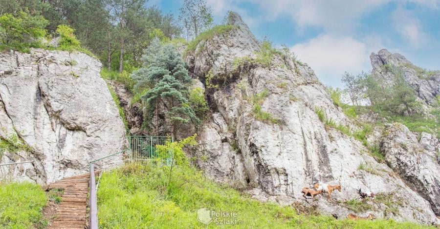 Dolina Kobylańska na Jurze - zdjęcie