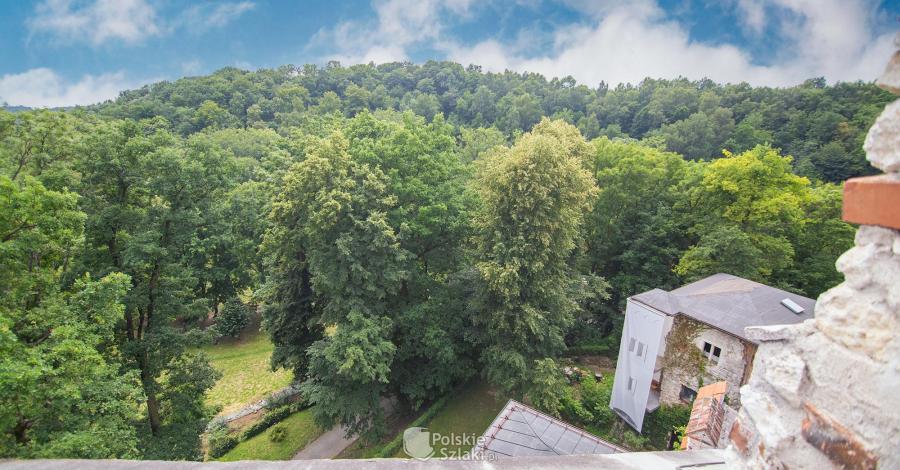 Korzkiewski Park Kulturowy - zdjęcie