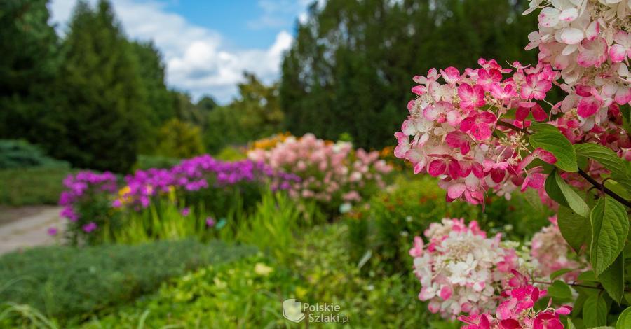 Ogród Botaniczny w Łodzi - zdjęcie