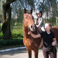 Zbrosławice - coś dla miłośników koni