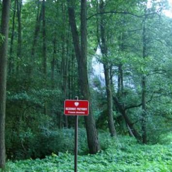 Dolina Mnikowska - zdjęcie