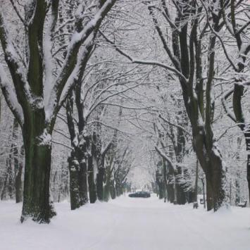 WPKiW zimą