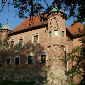 ZAmek w Dębnie - zdjęcie