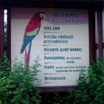 Mini Zoo w Rogowie i Bukowie