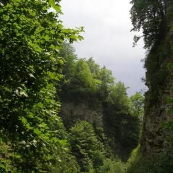 Krościenko n/D - Wąwóz Sobczański - Most Polsko-Słowacki - Czerwony Klasztor