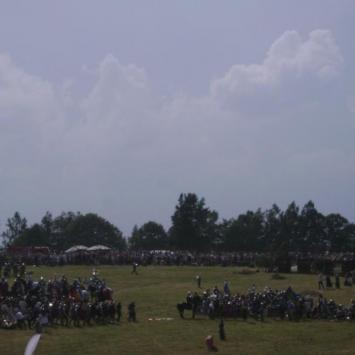Pole bitwy Grunwald - zdjęcie